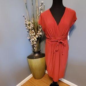 Jones New York Tropic Earth Dress Size 10P NWT